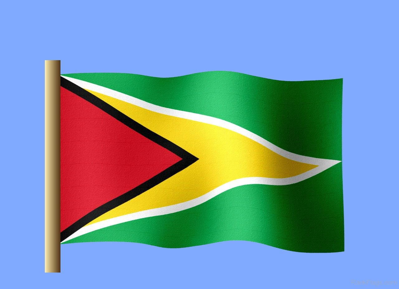 The Flag Of Guyana Gallery Diagram Writing Sample Ideas